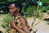 Bushmen picture with bow